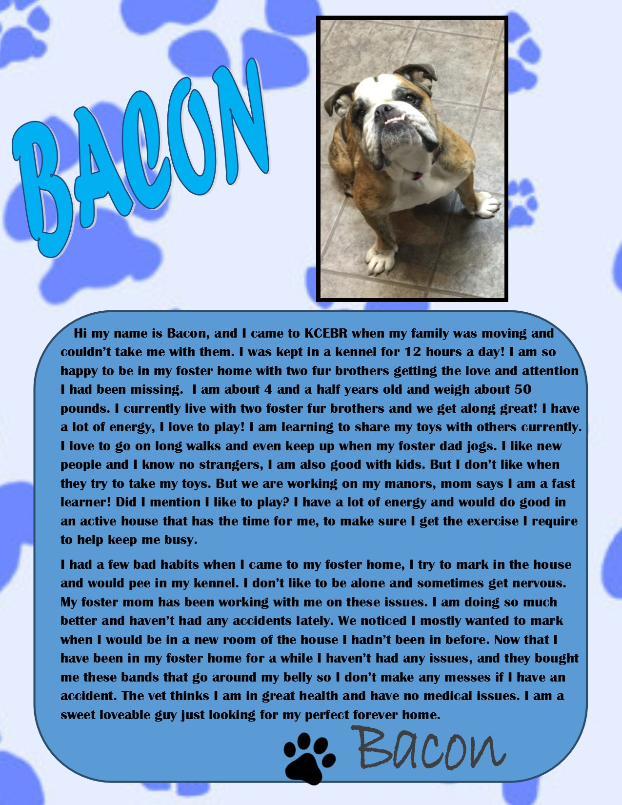 Bacon-Adopted