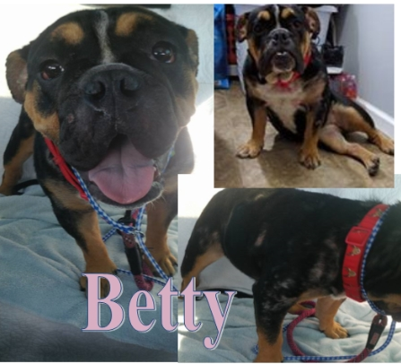 Betty-Adopted