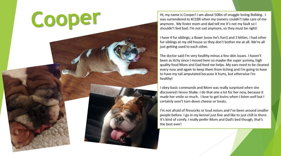 Cooper-Adopted